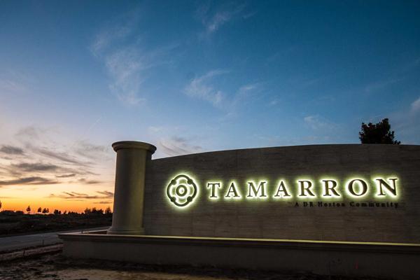 Tammaron