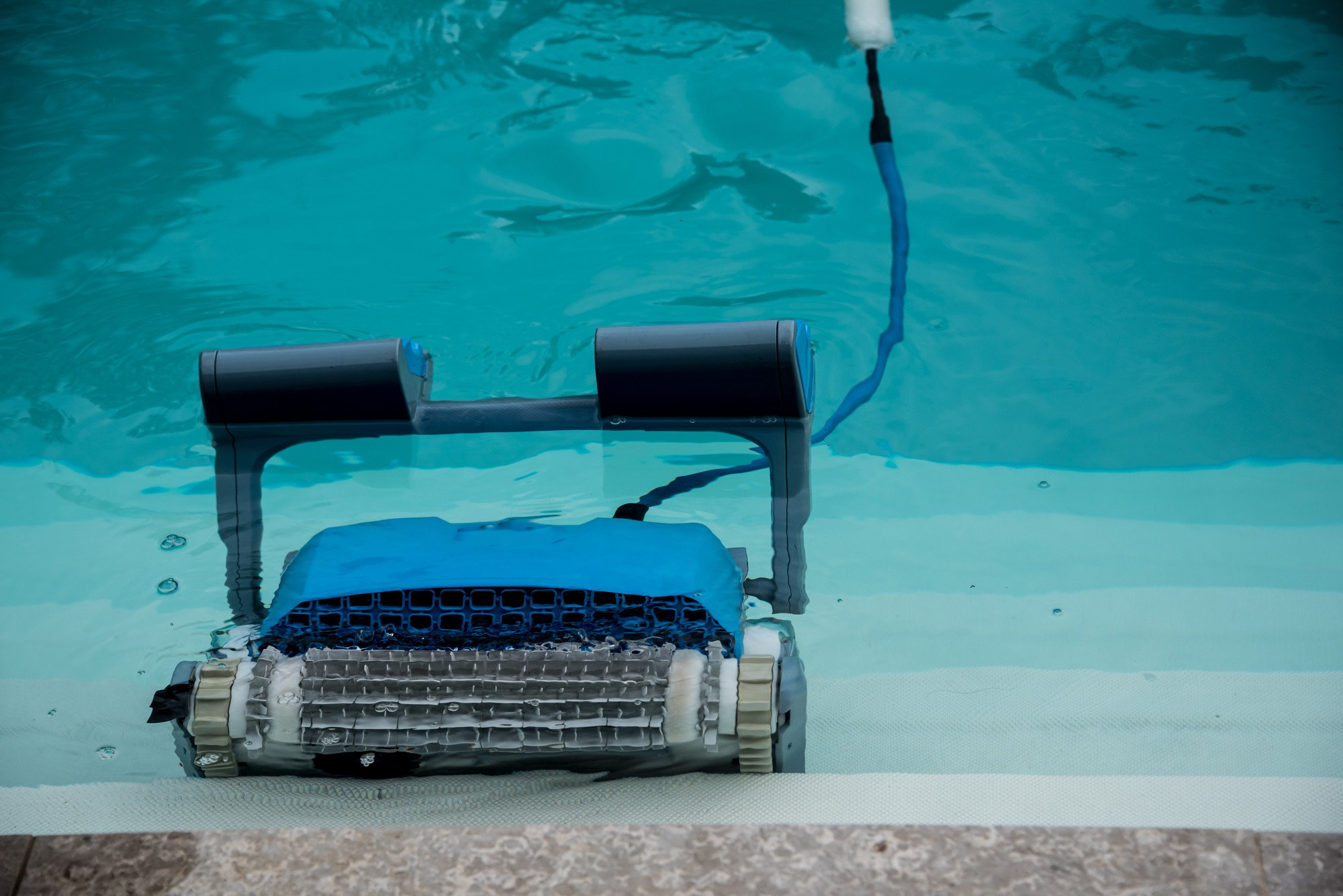 No Green Pools Allowed: What Are the Best Pool Cleaners out There?