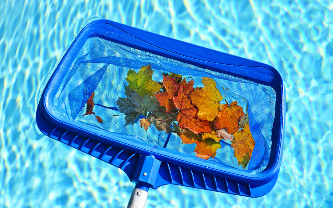 Tips for How to Take Care of a Swimming Pool