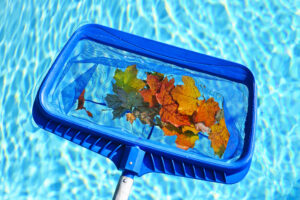how to take care of a swimming pool
